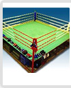24' x 24' Boxing Ring